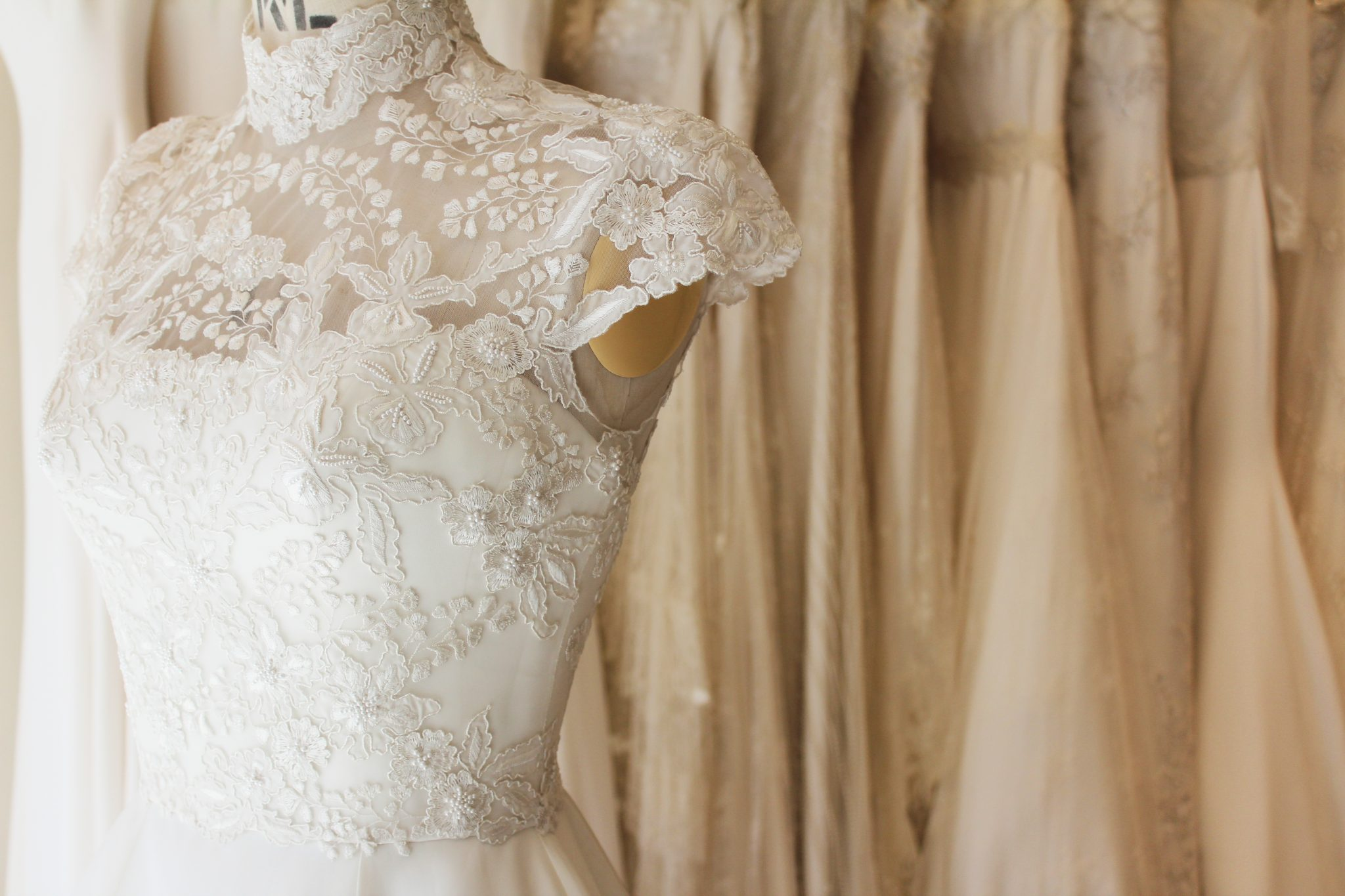 Left side of a Phillipa Lepley high neck wedding dress with embroidery and cap sleeves